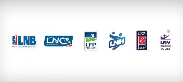 Les 6 ligues professionnelles adhérentes de l'ANLSP